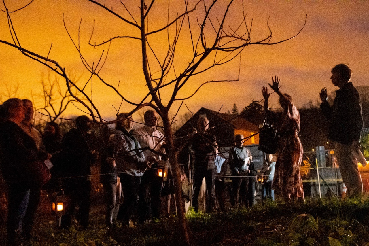 Photograph of people gathering in an apple orchard under an orange sky.